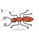 Red Ant Embroidery Design