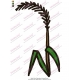 Spike Plant Embroidery Design 02